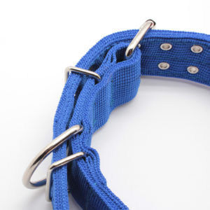 Durable-double-breasted-multi-colors-nylon-dog.jpg_640x640 (4)